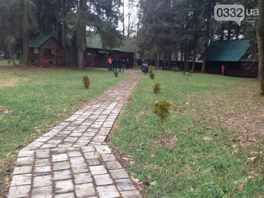 лес6.jpg
